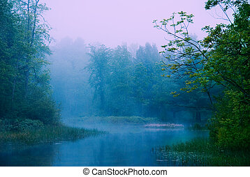 Magical morning - pink morning mist on the local river