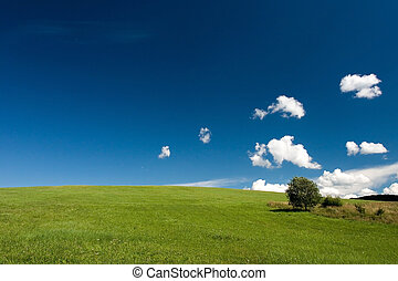 Summer abstract landscape with small white clouds and tree