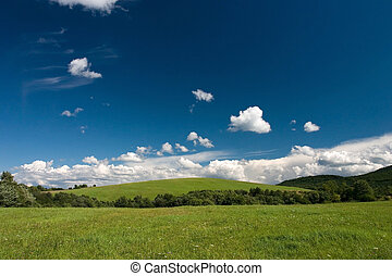 Summer cloudscape and green meadows - Summer landscape with...