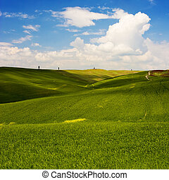Flowered Landscape - Landscape : Green field with yellow...