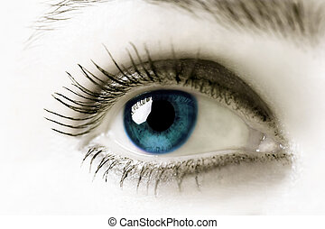 Blue Eye - Blue eye Extreme close-up High key