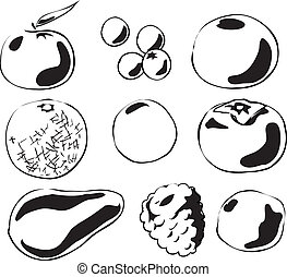 Fruits illustration - Black and white lineart Illustration...