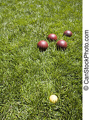 Bocce balls in the back yard grass