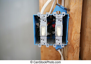 Two Gang Switch Box - A two gang, 120 volt single pole...