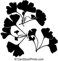 Ginko Biloba Silhouettes - Highly detailed BW illustration.