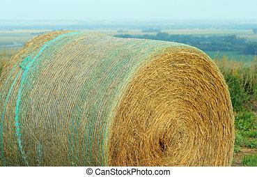 round bale, aqua netting