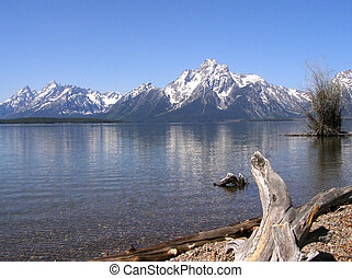 Mount Moran seen from the lakeshore trail at Colter Bay on...