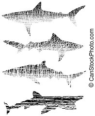 Grunge sharks - Illustrated outlines of sharks with grunge