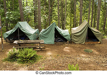 Tents At Boy Scout Camp - A group of canvas tents at a...