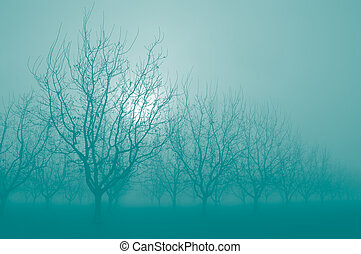 Pastel Turquoise Bare Walnut Trees
