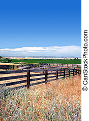 Cattle Corrals in Summer - Rural Wooden Cattle Corrals, Blue...
