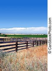 Cattle Corrals in Summer - Rural Wooden Cattle Corrals, Blue...