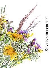 Bouquet of field flowers and plants-unpretentious beauty of...
