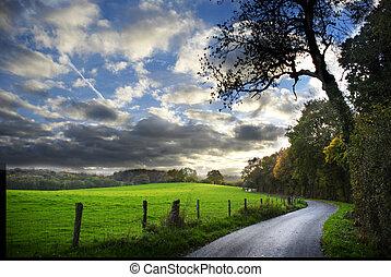 país, camino, otoño