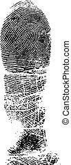 Full FingerPrint 2 - Full Finger FingerPrint (Very Detailed...