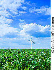 Clean energy - clean energy white wind turbine in corn field