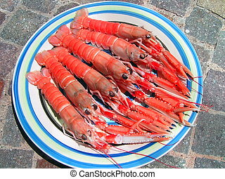 Five norvegian lobsters - Five Norvegian lobsters in a round...