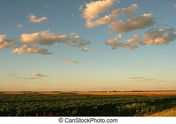 Prairie Sky - This image shows the prairie sky near sunset...