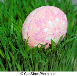 egg hunt - colorful easter egg on green grass