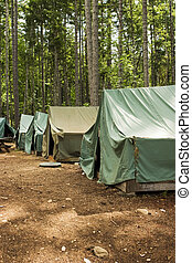 Tents At Summer Camp - A group of five tents in a clearing....