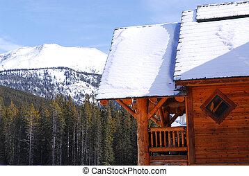 bûche, montagne, cabine