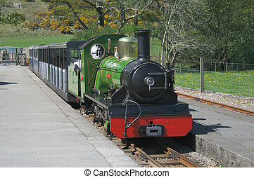 narrow gauge steam train arriving at a station platform