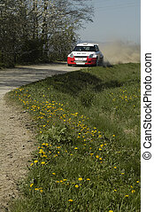 rally car - red and white car speeding on gravel road, green...