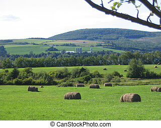Peaceful Countryside - Farmer\\\'s field, bales of hay in...