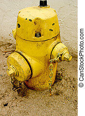 Old Fire Spout - Fire Hydrant
