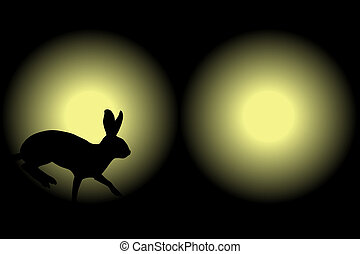 Headlight rabbit - Illustration of a rabbit caught in car...