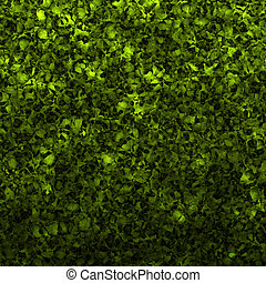hedge - a large illustrated background image a nice green...