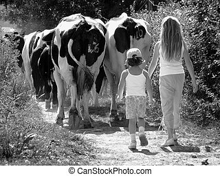 Milkmaids - A pair of girls bringing in the herd for milking...