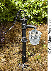 Water Pump with bucket