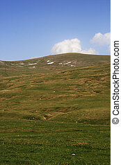 meadows - mountain meadows with blue sky above