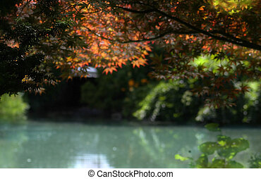 Acenic Blue Water Pond