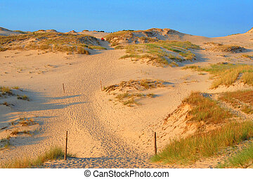 Large dune at the seaside,  summer holidays, landscape