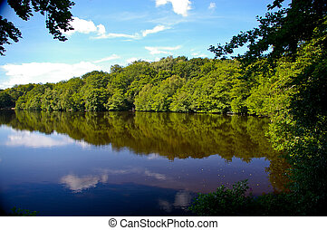 Mirror image - Reflections in a lake at Sutton Park,...