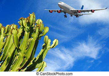 Plane and tropical destination - Plane is about to land at a...