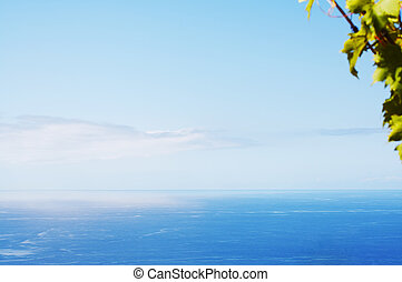 Ocean - View of Atlantic ocean with out of focus green leafs