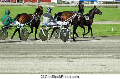 Trotting horses - trottinghorses is comete on a racecourse...