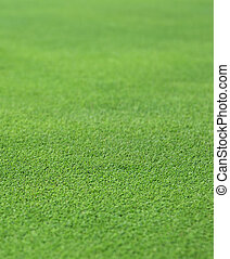 fine green grass - the finely manicured green grass or turf...