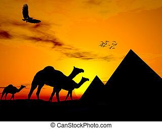 Desert sunset egypt - Illustraton of Camels walking in...