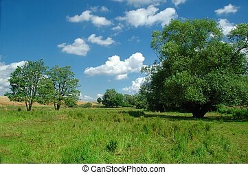 Idyllic landscape with blue sky, white clouds, green grass...