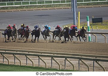 Horse Racing - The cut-edge races