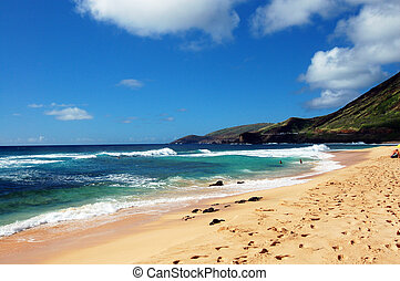 arenoso, praia, Honolulu, Hawa