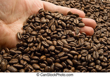 hands with coffee beans - hand and coffee beans