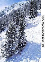 Ski tracks in mountains