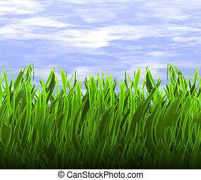 green grass - a nice big image of long green grass in front...