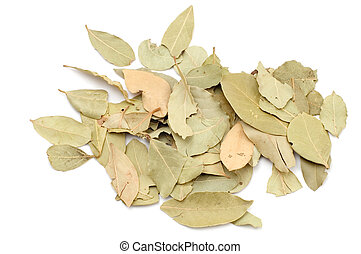 bay leaf - series object on white - food - bay leaf
