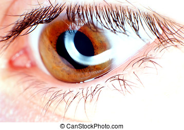 Blue eye in macro , ring flash